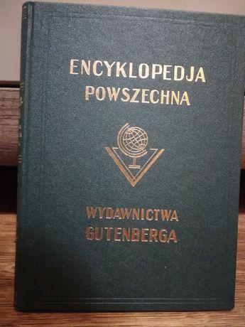 Encyklopedia 22 tomy wydawnictwo Gutenberga 1995
