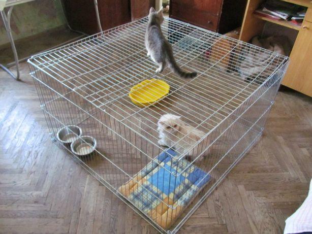 Вольер, манеж закрытый, клетка для собак щенков котят 100х100х60h 2в1