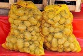 Sprzedam ziemniaki sadzeniaki