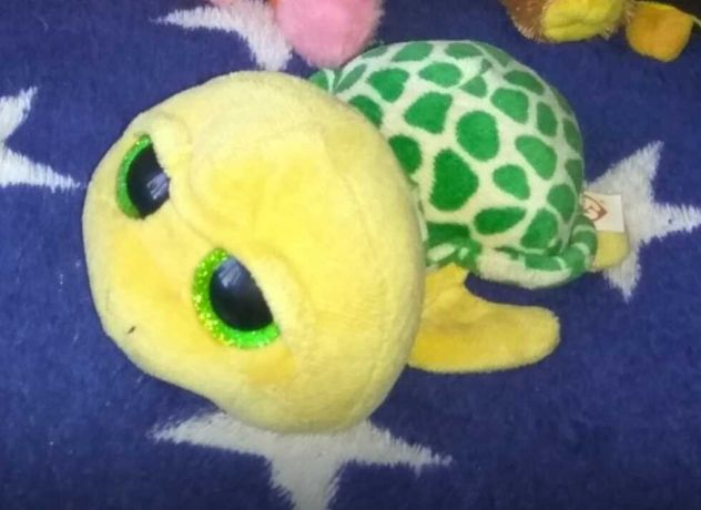 Глазастик черепаха, черепашонок.