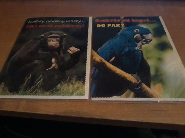 pocztówki zwierzęta