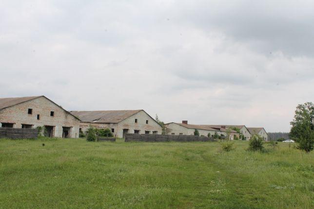 Продам ферму (колишній корівник)