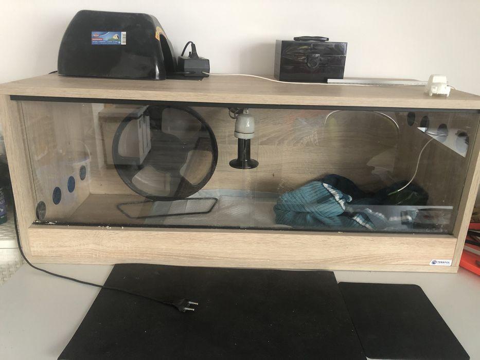Sprzedam w pelni wyposazone terrarium dla jeża i gekona, agamy  100x40 Kolbuszowa - image 1
