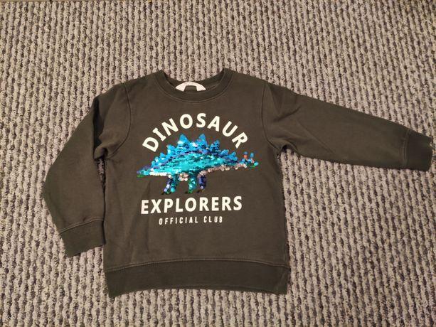 Bluza z dinozaurem hm 104