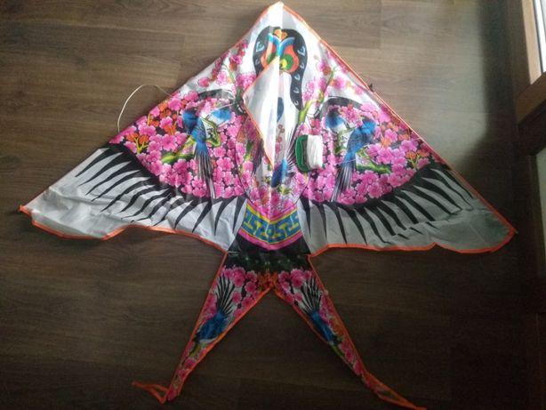 Papagaio voador