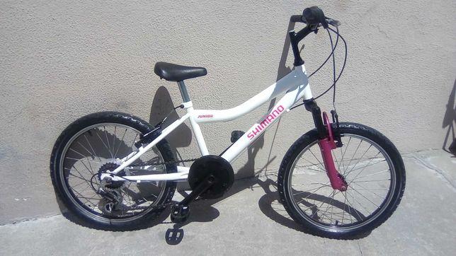 Bicicleta Shimano de menina roda 20 praticamente nova