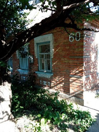 Дом в центре Васильевки