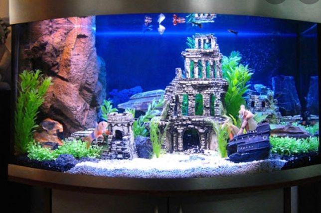 Виготовлення  та обслуговування акваріумів