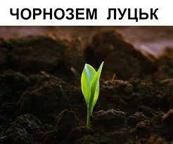 Чорнозем, торф, гній, земля на вимостку