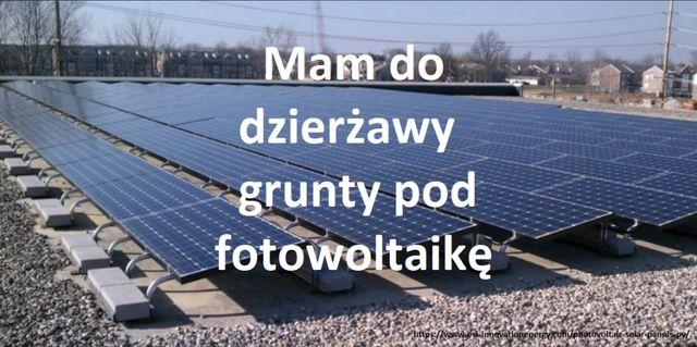 Działka rolna pod dzierżawę fotowoltaika działki pod fotowoltaikę >5ha