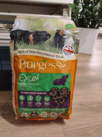 Pokarm Burgess Exell Mięta 4 kg dla świnki morskiej