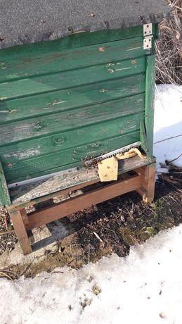 Sprzedam Ule warszawskie zwykłe z pszczołami lub bez. Ule pszczoły