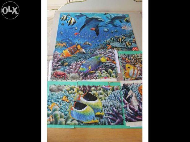 Puzzle com imagem marítima - golfinhos e peixes