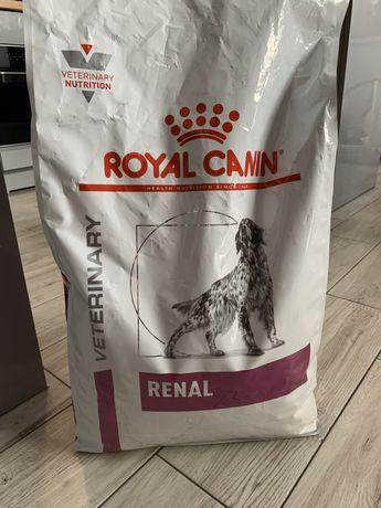 Karma sucha Royal Canin Renal PIES 6kg Dieta weterynaryjna NERKI