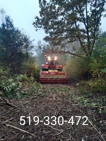 Wycinka drzew mulczowanie czyszczenie terenu mulczer leśny rębak