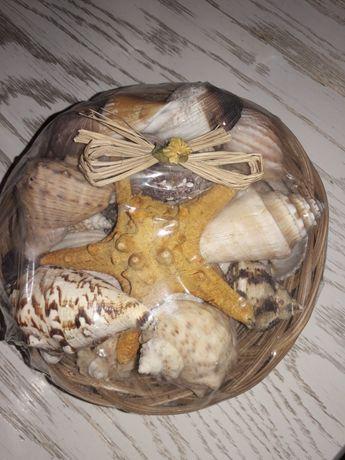 Морские ракушки,мушлі