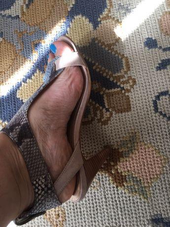 Sandálias em serpente azul e castanho da Sacoor