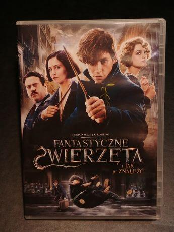 Film dvd Fantastyczne Zwierzęta Rowling