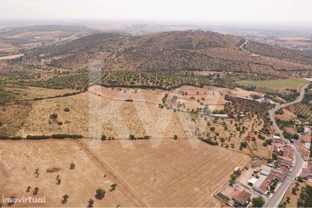 Terreno  De 61.200 M2, Na Localidade Do Vedor, No Concelho De Elvas