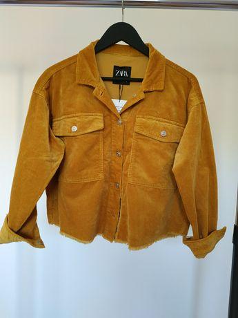 Пиджак, укороченная рубашка оверсайз от Zara