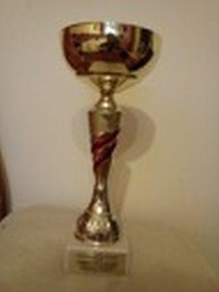 Puchar złoty z wstawkami czerwonymi z 2013 r.