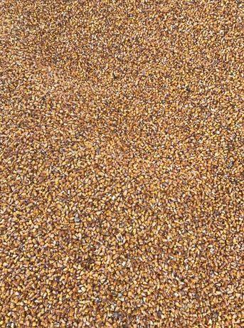 Kukurydza sucha workowana lub śruta