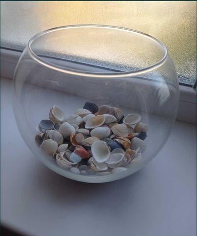 Круглый аквариум с рыбкой