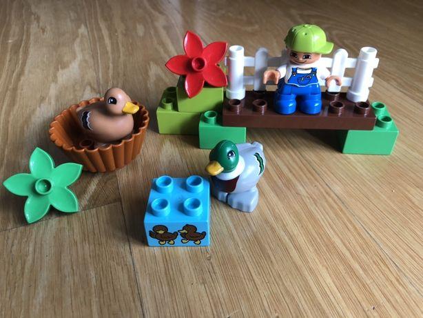Lego Duplo 10581 kaczki kaczka