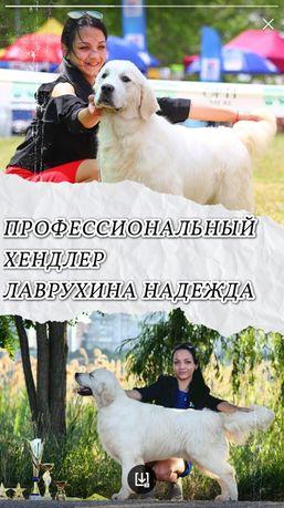 Хендлер Одесса..