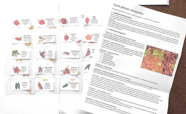 Sementes Pimenta Malagueta 25 Espécies Escolha as que quiser