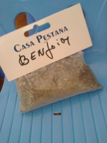 Planta de Benjoim - 100 g