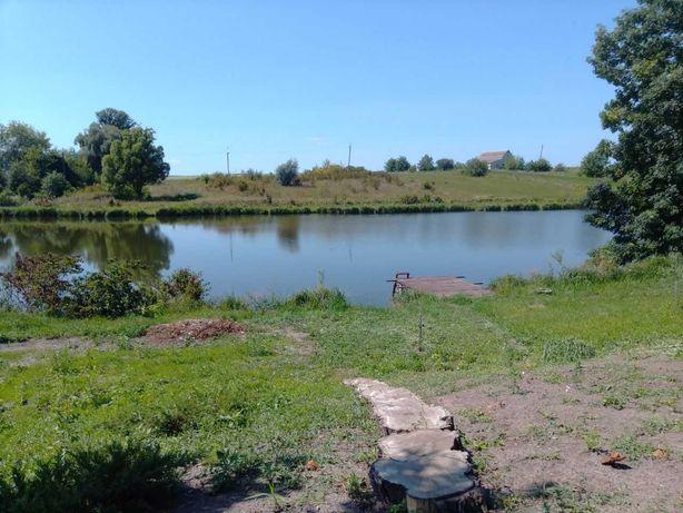 Срочная продажа!Дом в селе Дениховка на берегу озера. 150 км от Киева.