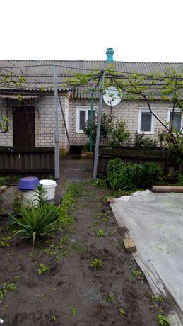 дом в с. Приволье