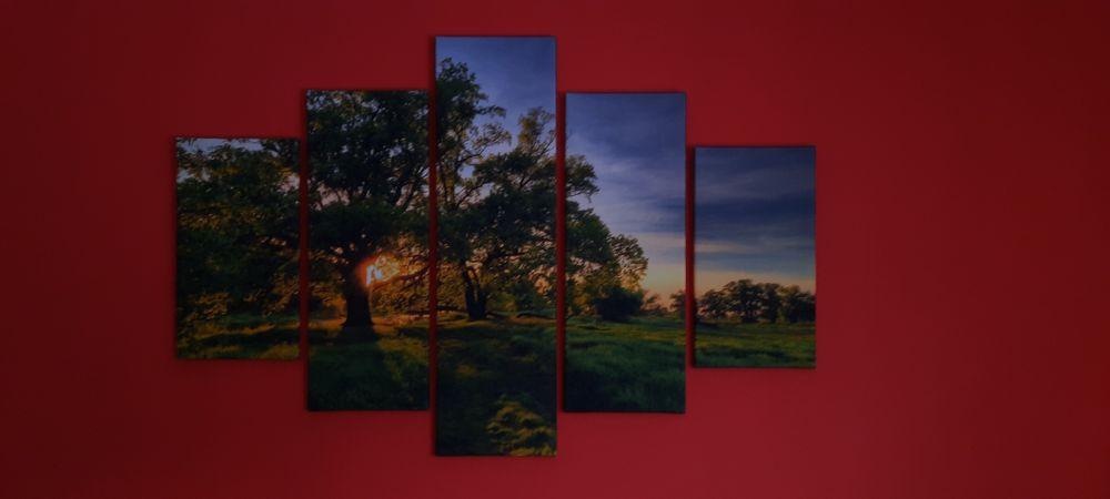 Obraz 160x100 pięć części. Kuków - image 1