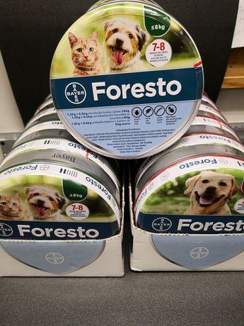Obroża dla kotów i psów o masie ciała do 8kg