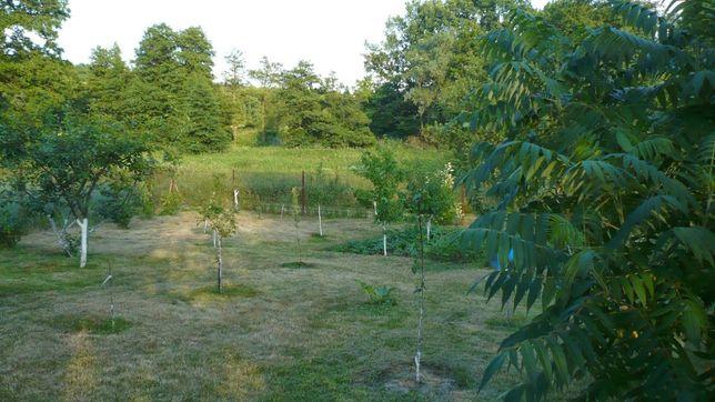 Działka ogrodowo - rekreacyjna rogowa przy rzece ROD Starogard Gd.