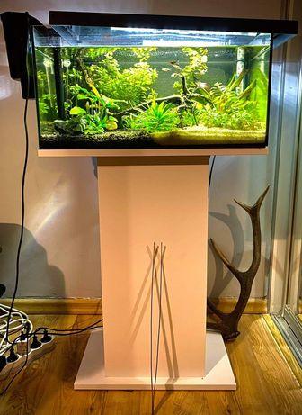 Akwarium Aquael 54L z szafką Aquael