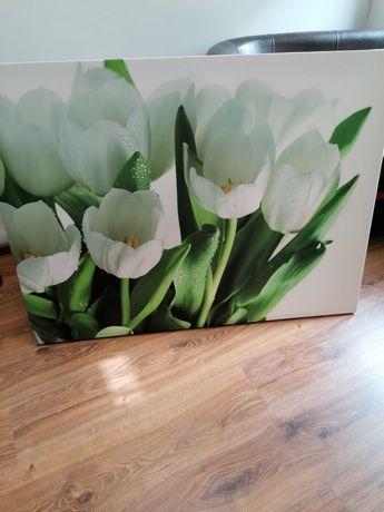 Obraz canvas tulipany białe duży xxl