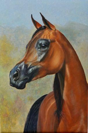 Аравийская лошадь Арабский скакун (конь), картина, живопись , масло, л