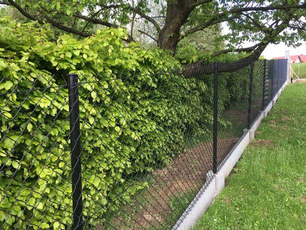 kompletne ogrodzenia z siatki wraz z podmurówką