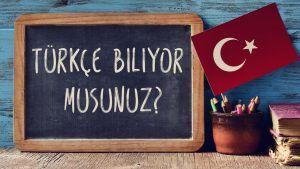 Турецкий и английский языки