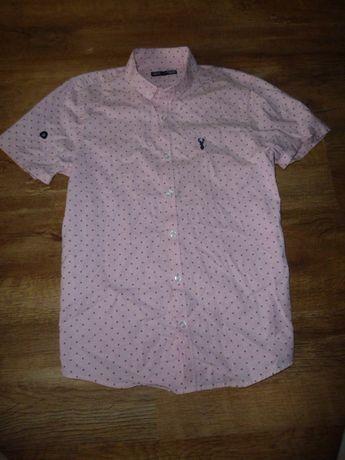 next Рубашка Некст на 13 лет рост 158 см из новой коллекции