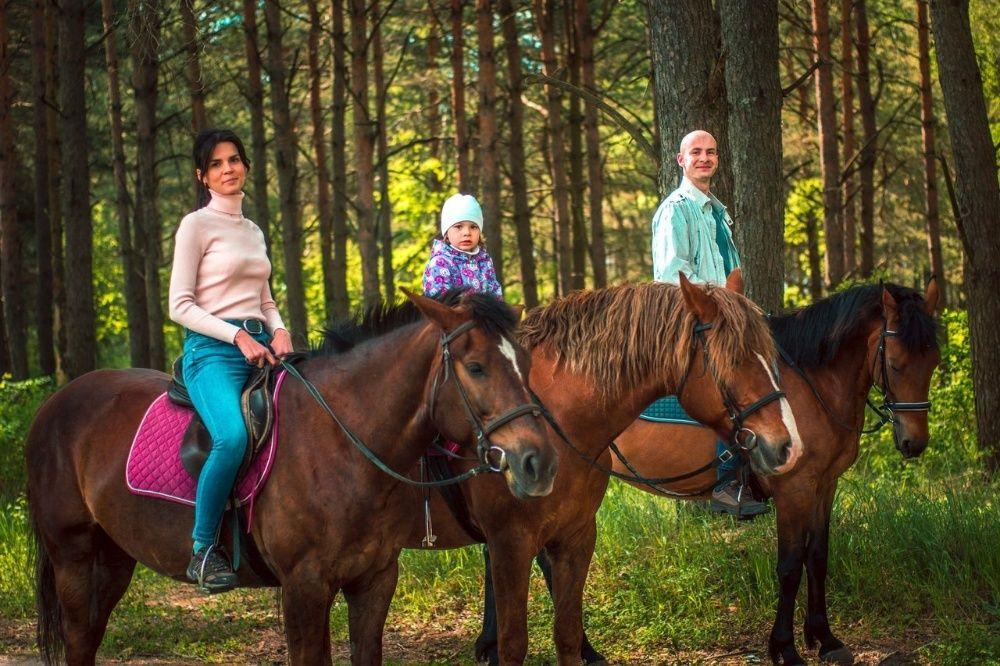Конные прогулки, уроки фотосессии