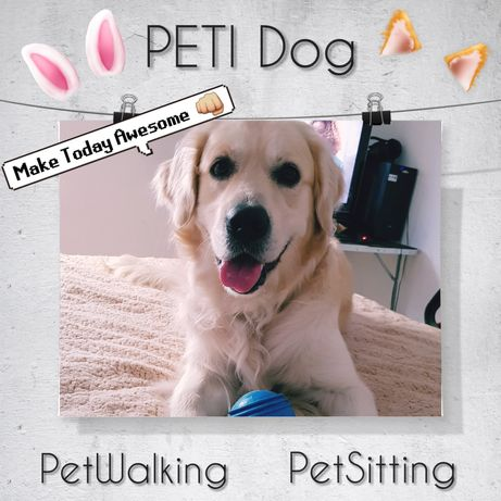 DogWalking & PetSitting