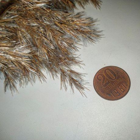 Продам монету 1961 года