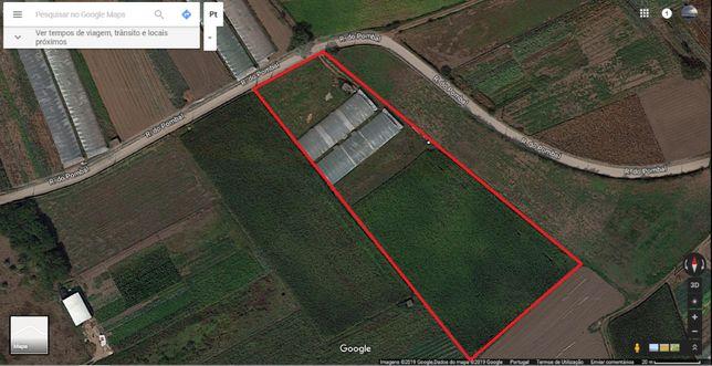 Vendo terreno agrícola
