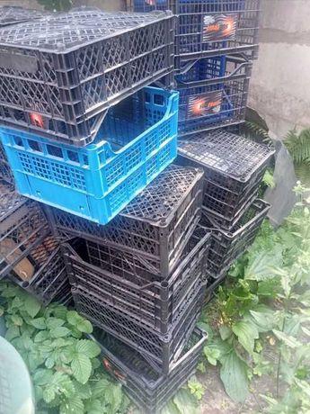 Продам пластмасові ящики 5 грн 1 шт