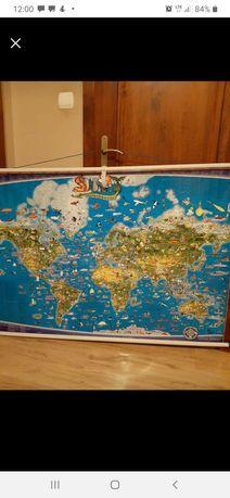Mapa świata zwierząt