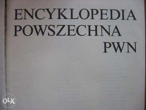Encyklopedia PWN-4 tomy