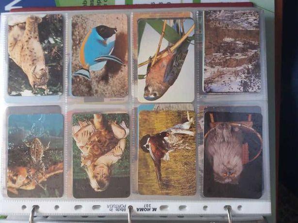 Colecção de 630 calendarios de bolso anos 80